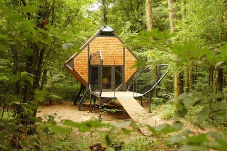 Le Nichoir - Cabin