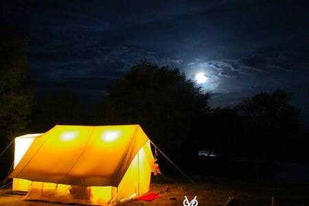 Bikamp Adventures - Leh - Tent