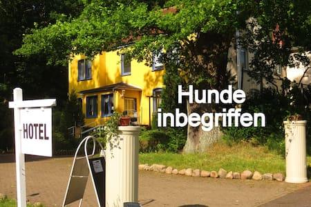Natur pur, Hund OK, Zimmer Du, WC, Sat-TV, WLAN - Sternberg