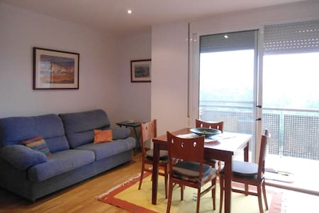 PISO CON VISTAS AL EBRO - Appartement