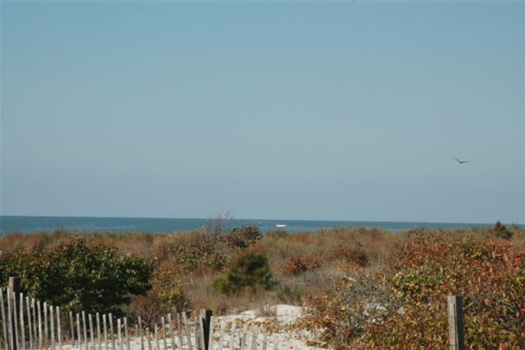 At Waters Edge your are only steps away from our private beach!