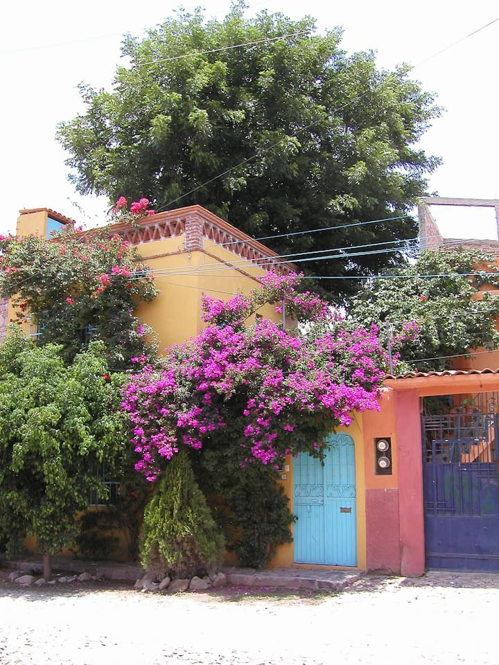 Bouganvilla covered front of Casa Ramona.