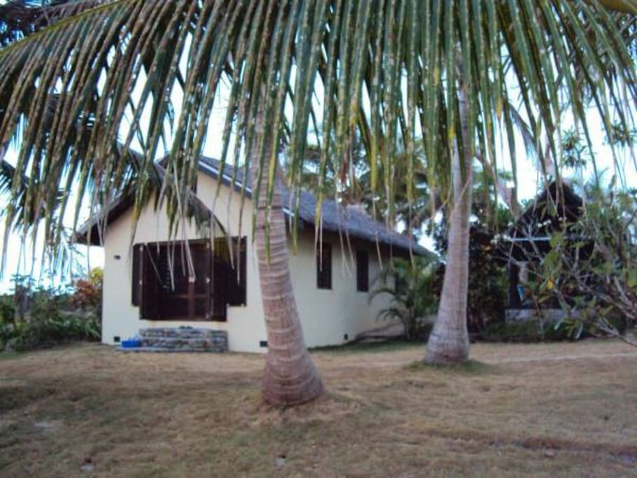 Relax under the coconut palms beside the beach
