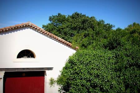 Appartement dans maison vigneronne - Saint-Brès, Hérault