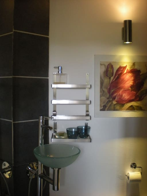 Shower room with WC and basin/salle d'eau avec lavebo et WC