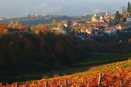 Azienda Agricola Oreste Stefano