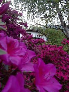 B&B Al Mutpron leben in der Natur - Casale Corte Cerro
