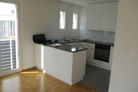 Sunny room 15 min to Zurich by train - Wetzikon - Apartment