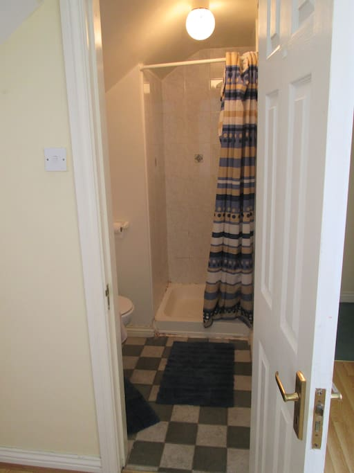 En suite with electric shower; towels, shower gel and shampoo are all provided for you