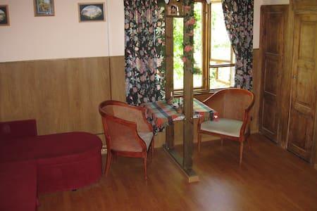 Комната-студия с мини кухней - Kotka - Appartement