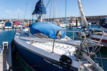 Saiboat in the marina + wifi - El Puertito de Güimar - Barca