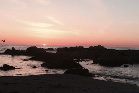 QUAINT PACIFIC GROVE/PEBBLE BEACH - 獨棟
