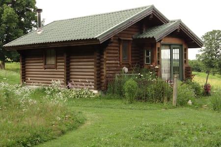 Karen's Tiny Log Cabin Home