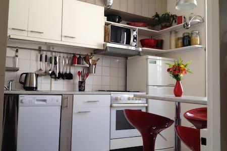 duplex lumineux 55m2 centre ville quartier marché - La Rochelle - Wohnung