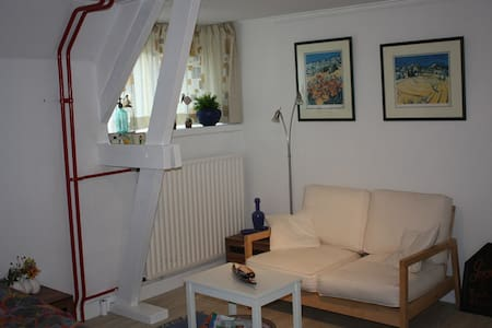 Grote kamer in centrum van Tilburg - Tilbourg - Bed & Breakfast