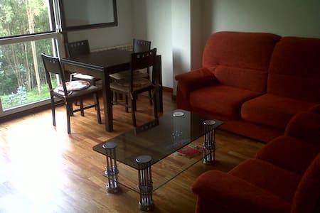 Bonito piso Santiago