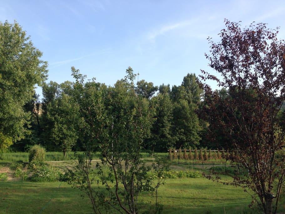 rent holiday Italy, Urbino, Marche