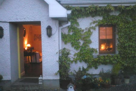 Cosy double room in country cottage Co. Kilkenny - Kilkenny