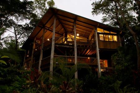 Gorgeous Tree House Trinity Beach  - House