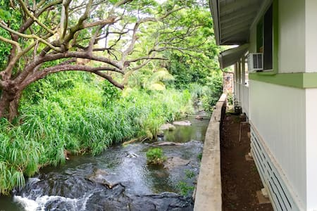 Urban Stream-side Adventure Base Home! - Honolulu - House