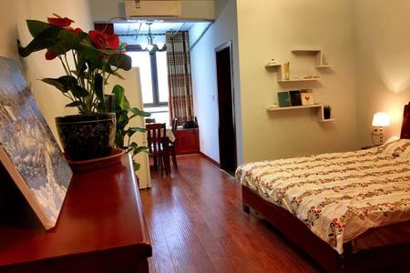 江北滨江路鎏嘉码头舒适公寓,临江100米 - Chongqing - Apartament