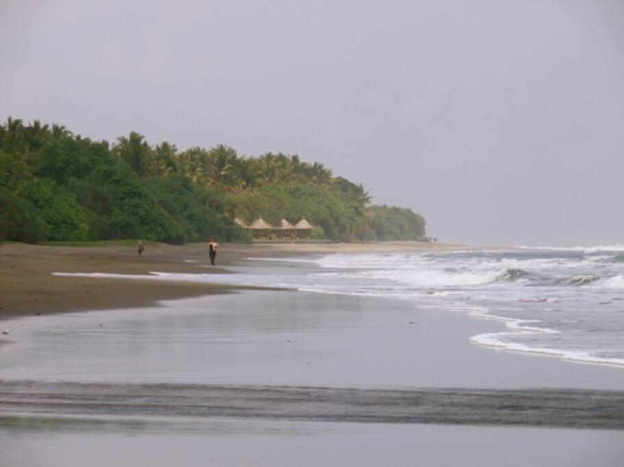 Fisherman wanders along Soka Beach. Your secluded location.