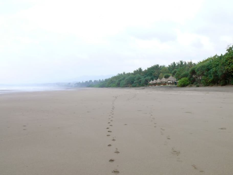 Secluded. Serene. Isolated. Perfect fior getting away from it all and recharging.