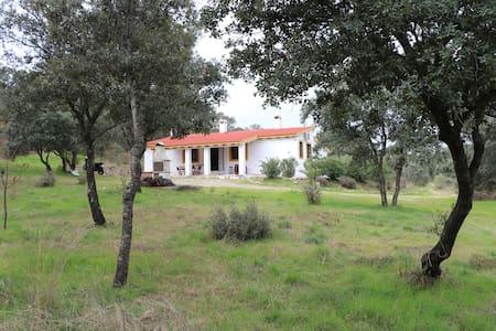 Finca rustica de 100 hectareas a 50 km de toledo - Maqueda - Casa