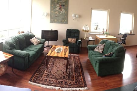 Spacious and beautiful apartment  - Appartement