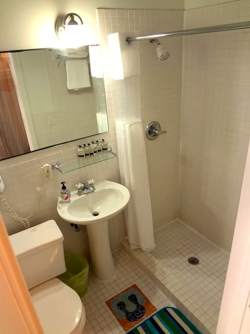 Clean bathroom and walk-in shower