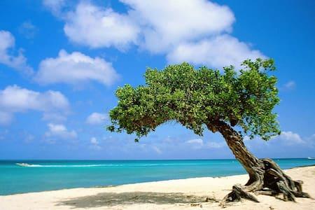 Aruba, close to beach - 아파트