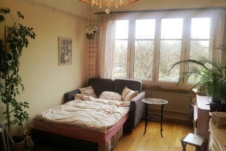 Nostalgic Room near Messe Basel