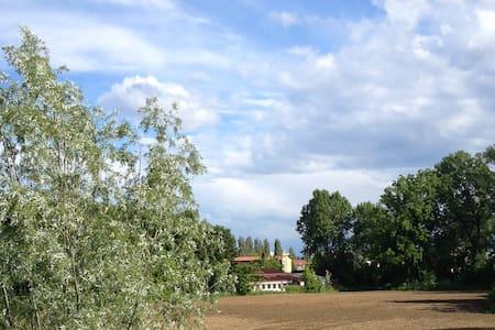 green art, 25 min from Venice - Maison