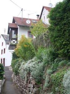 fraai vakantiehuis huren in Duitse Vulkaan Eifel - Eisenschmitt - Casa