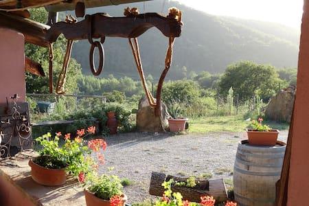 Chianti Farmhouse Tuscany Torre - Leilighet