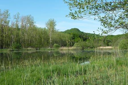 La chambre verte en Petite Montagne - Andre