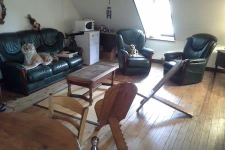 Grande chambre chez l'habitant  - Casa