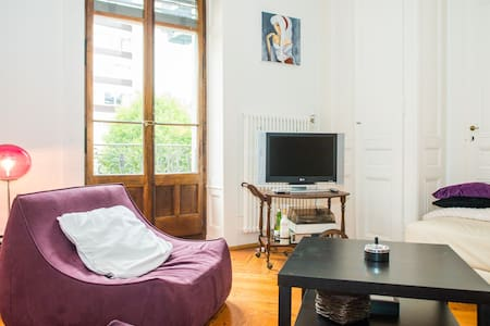 This flat is located at 100 meter from the Lake in the city . Its a cosy and quiet Flat . You can also use my bike, and you are at 50 meter from the train station. The best place to stay in Geneva for a couple or business travel.