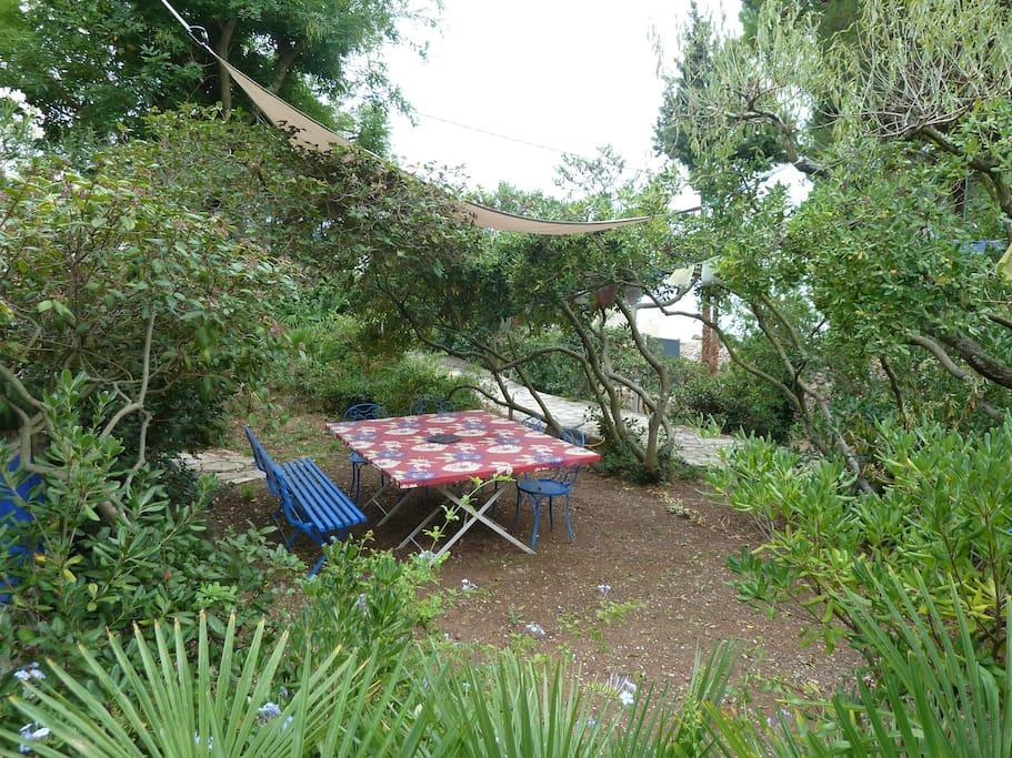 Jardin/ Garden