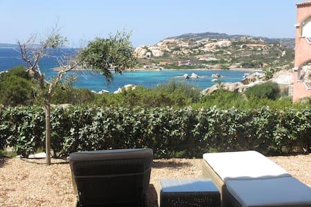 on the most tourquoise sea ever - La Maddalena
