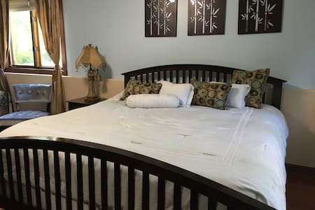 Garden Level Large Bedroom with King and Twin beds - Huis