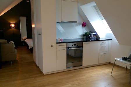 Modern Apartment - Centrally Located - Zürich - Wohnung