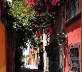 Cómodo espacio - San Miguel de Allende - House