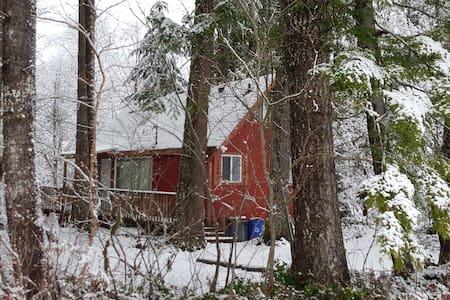 Charming Cabin by Mt Rainier - Ashford - Бунгало
