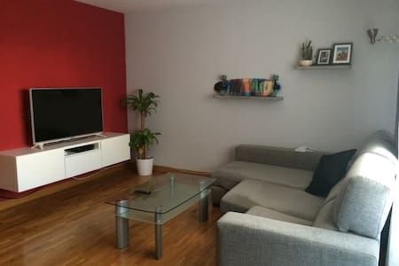 Nice flat for rent in Pamplona - Entire Floor