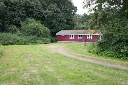 Skovløberhus i  naturskønne omgivelser. - Grenå - Cabanya