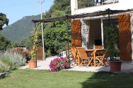 QUENZA - Alta Rocca - Location - Quenza