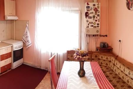 Comfortable apartment close to Citadel - Leilighet