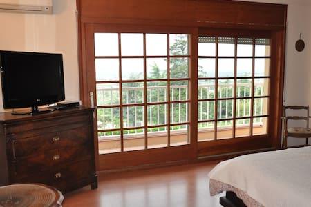 Chambre double avec salle de bain privée - Pau