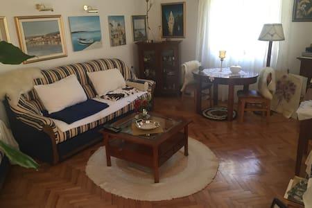 Villa(House) ROSES (for 6 people) (R1) - Novalja - Villa